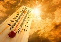 Les règles à respecter quand il fait chaud
