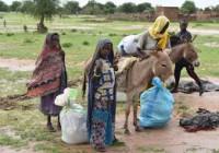 Soudan : des affrontements au Darfour occidental forcent 2.500 personnes à fuir au Tchad